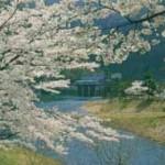 大野ダム公園